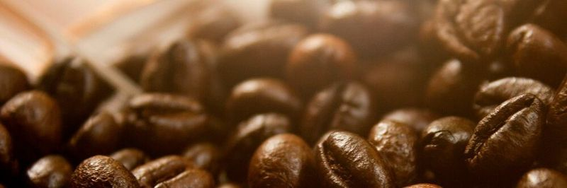 JavaBeans are reusable and mostly lightweight software components that are used within Java.